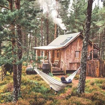 Building your own cabin is not that hard check our bio for cabin plans @bi... Building your own cab