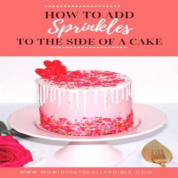 How to add Sprinkles to a cake - Wow! Is that really edible? Custom Cakes+ Cake Decorating Tutorial