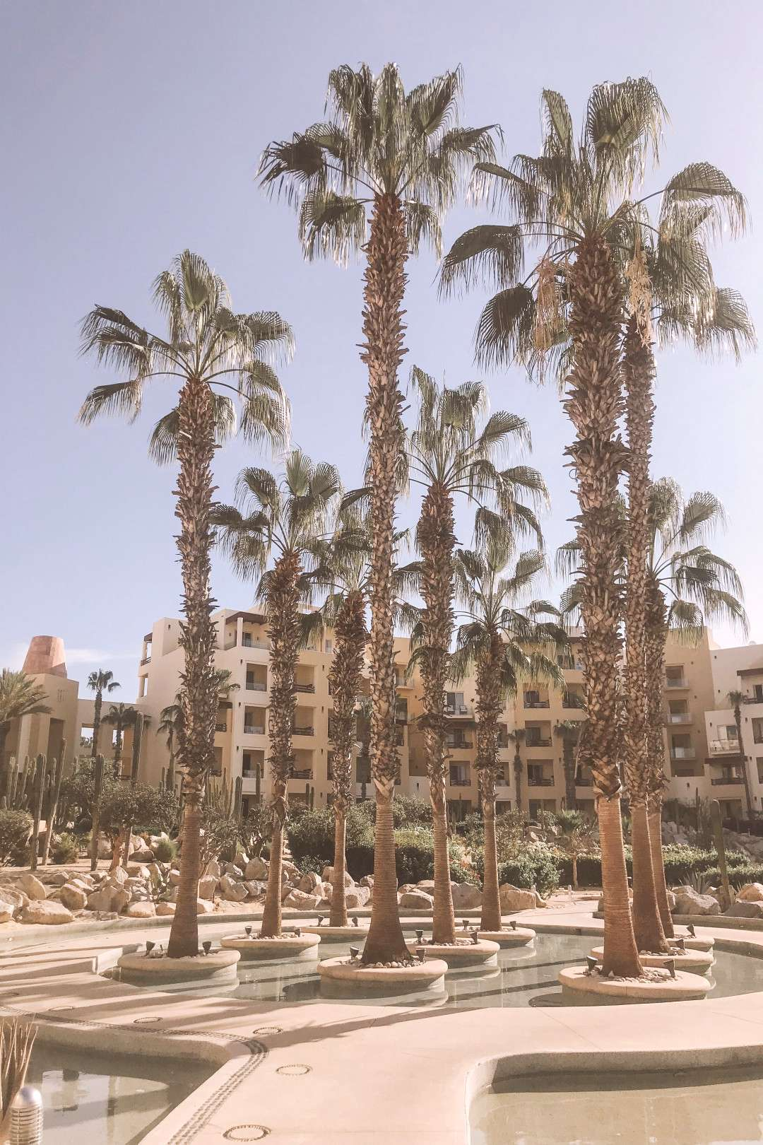 Photo Diary of Our Honeymoon in Cabo The Basics
