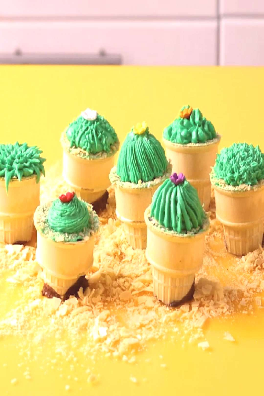 Potted Cactus Cakes Potted Cactus Cakes,