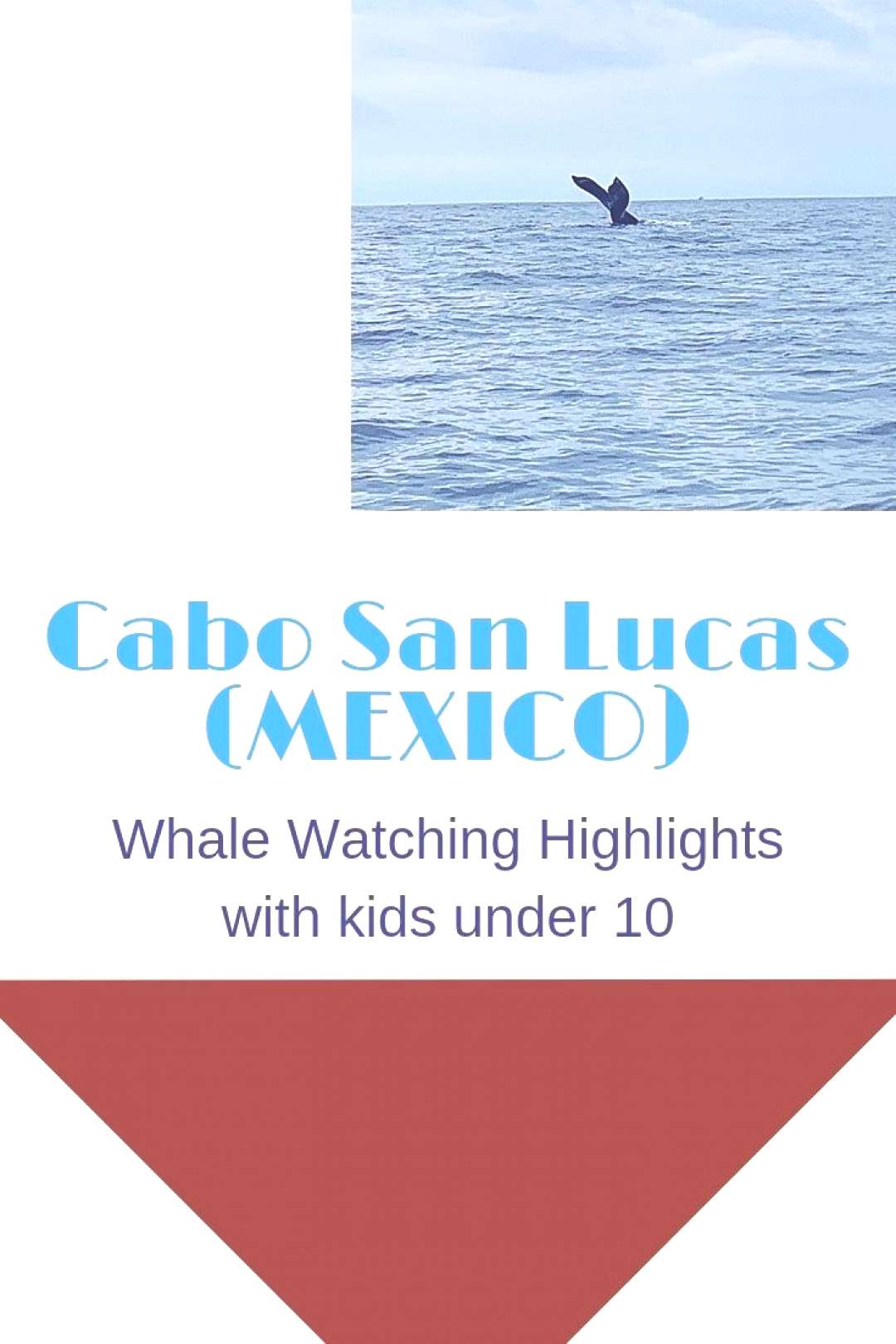 Whale Watching Cabo (Mexico) Review of our experience with Cabo Trek whale watching in Cabo San Lu