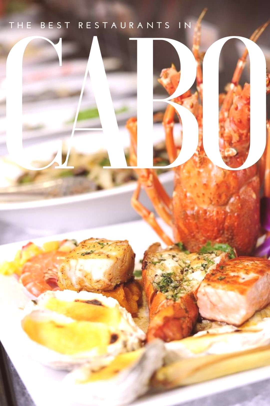 When it comes to Cabo San Lucas Mexico there are a huge range of restaurants and food to choose fro